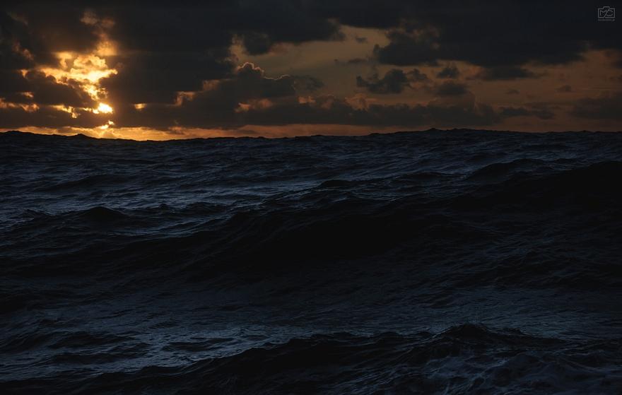 Morze III